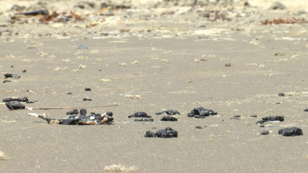 Recently, several beach visitors have come home Port Aransas and Padre Island covered in black, sticky tar.