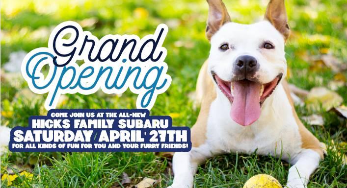 Corpus Christi Subaru >> Adopt a pet for free at Hicks Family Subaru Grand Opening